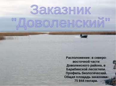 Расположение: в северо-восточной части Доволенского района, в Барабинской лес...