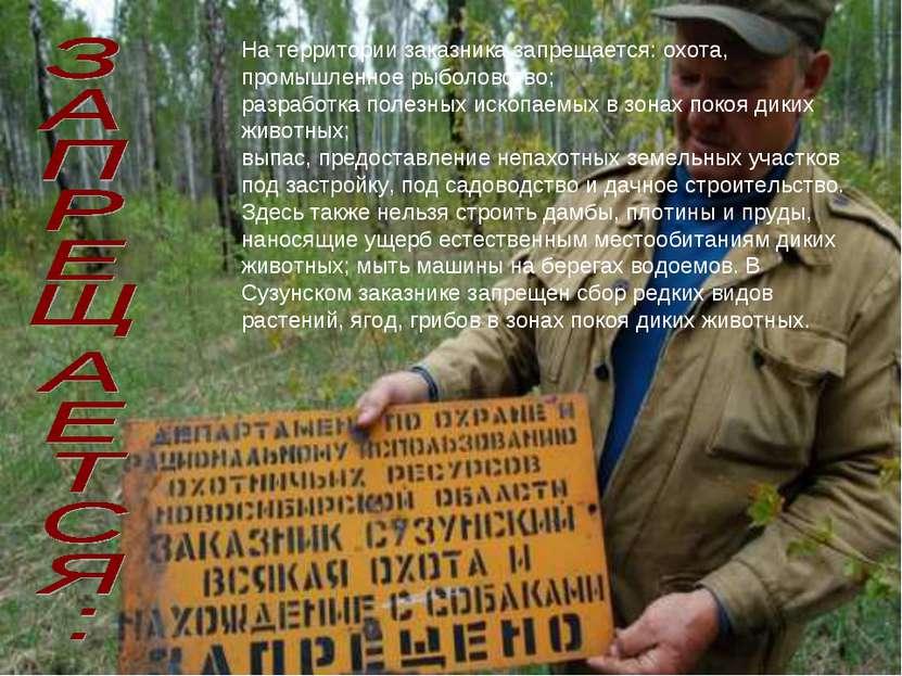 На территории заказника запрещается: охота, промышленное рыболовство; разрабо...
