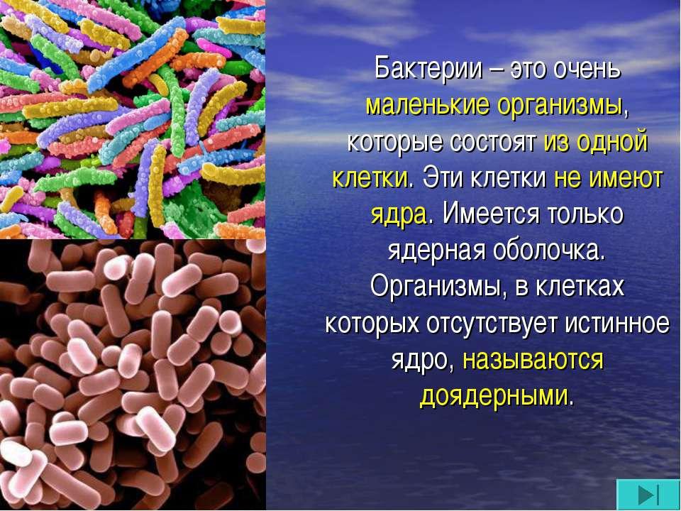 Бактерии – это очень маленькие организмы, которые состоят из одной клетки. Эт...