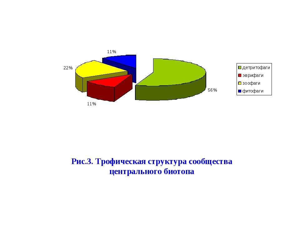 Рис.3. Трофическая структура центрального биотопа Рис.3. Трофическая структур...