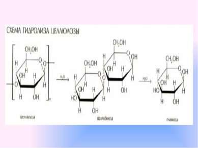 Какое общее свойство есть у сахарозы и крахмала? Как это можно подтвердить в ...