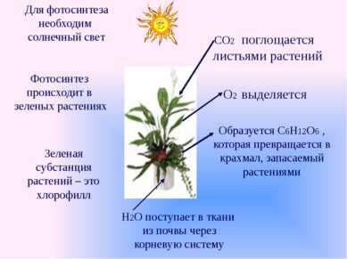 Формы существования глюкозы в растворе Кристаллическая форма глюкозы