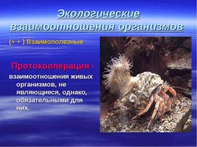 Экологические взаимоотношения организмов (+ + ) Взаимополезные Протокоопераци...