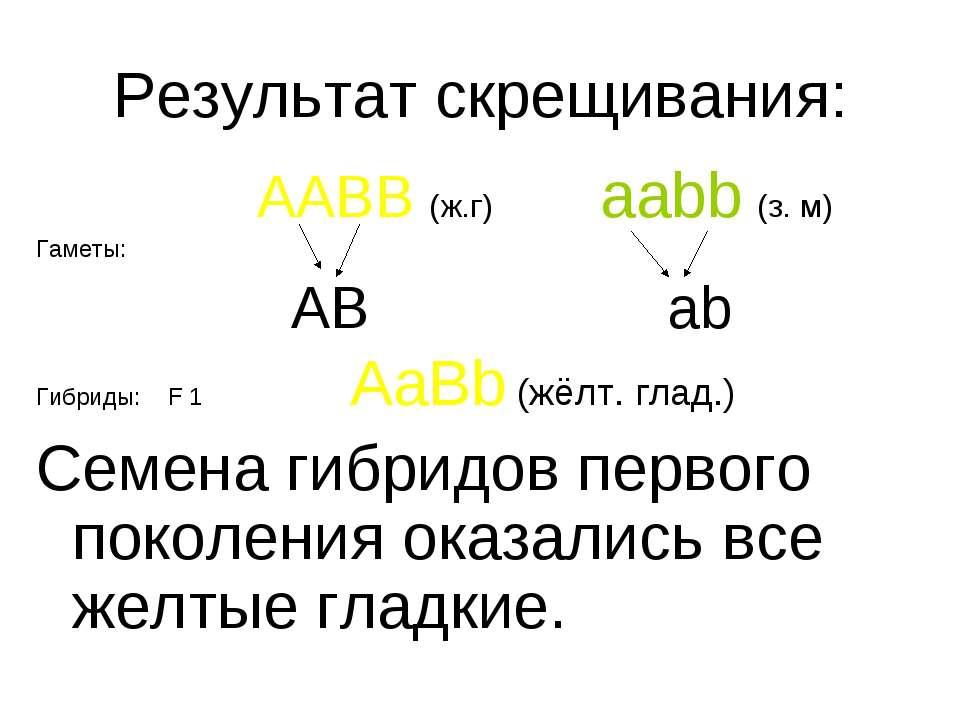 Результат скрещивания: AABB (ж.г) aabb (з. м) Гаметы: AB ab Гибриды: F 1 AaBb...