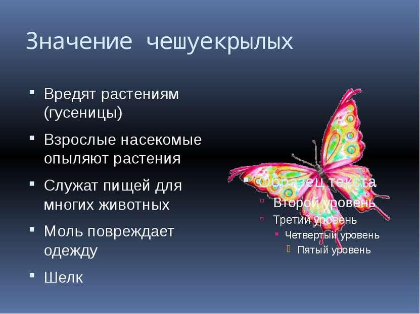 Значение чешуекрылых Вредят растениям (гусеницы) Взрослые насекомые опыляют р...