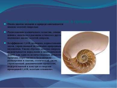 Принципы формообразования в природе Очень многие явления в природе описываютс...