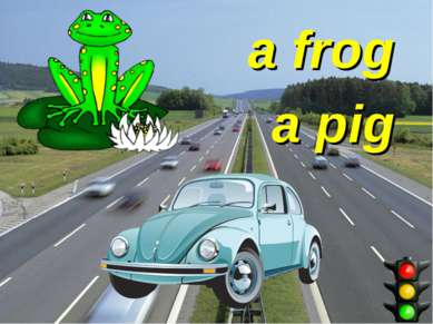 a frog a pig