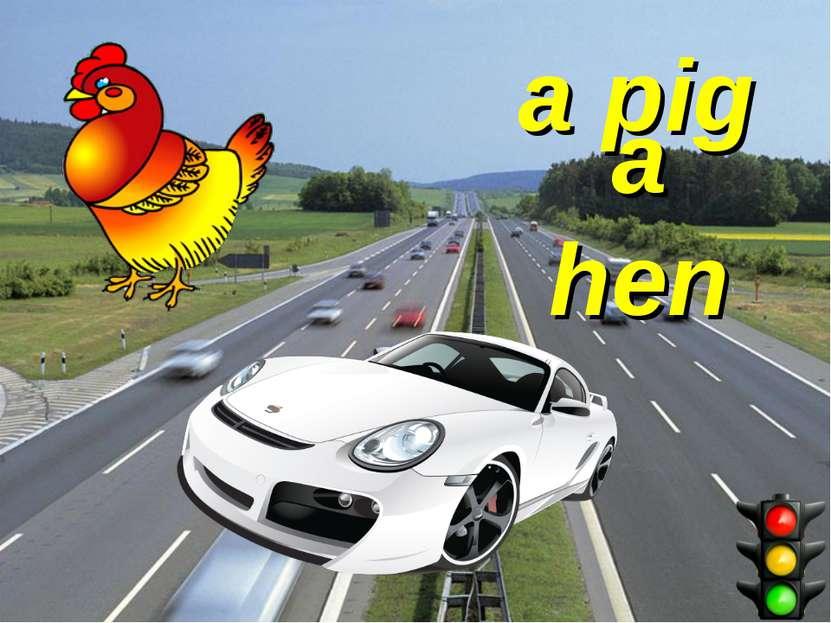 a pig a hen