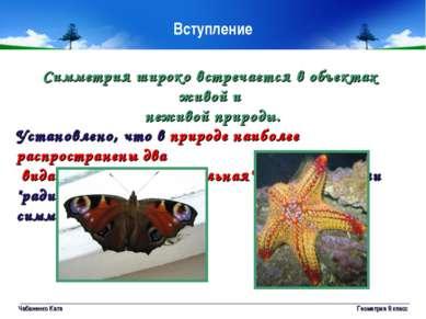 Чабаненко Катя Геометрия 8 класс Симметрия широко встречается в объектах живо...