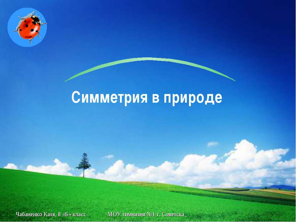 Чабаненко Катя, 8 «Б» класс МОУ гимназия №1 г. Советска Симметрия в природе Г...