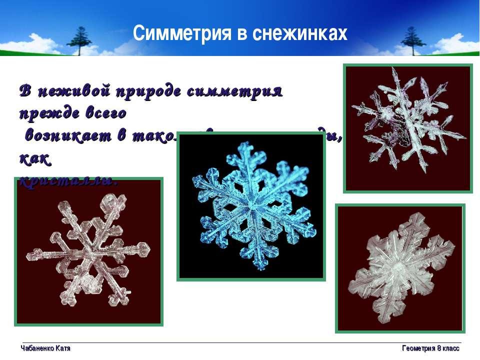 Чабаненко Катя Геометрия 8 класс Симметрия в снежинках В неживой природе симм...