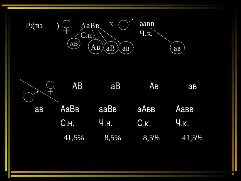Р:(из ) АаВв С.н. Х аавв Ч.к. 41,5% 8,5% 8,5% 41,5% АВ аВ Ав ав ав АаВв С.н. ...