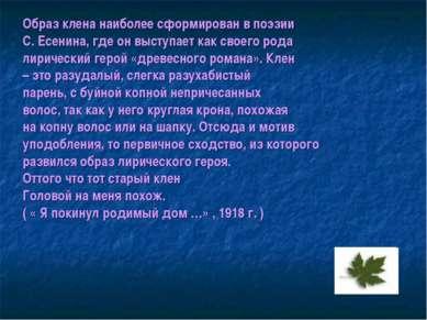Образ клена наиболее сформирован в поэзии С. Есенина, где он выступает как св...