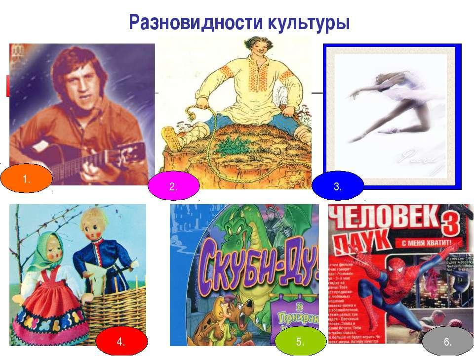 Разновидности культуры 1. 4. 5. 6. 3. 2.