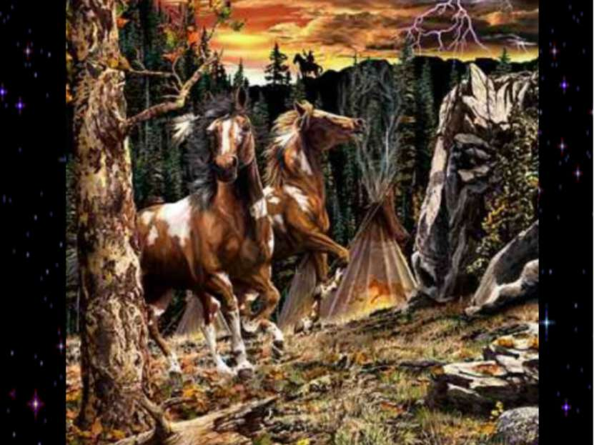 Найдите 14 лошадей
