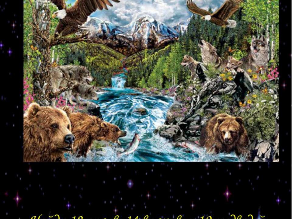 Найди 12 орлов, 14 волков, и 10 медведей