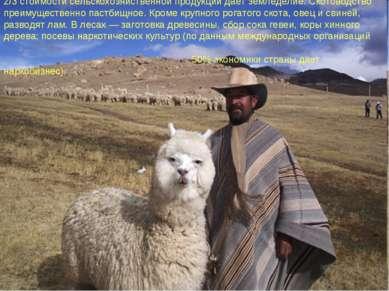 2/3 стоимости сельскохозяйственной продукции дает земледелие. Скотоводство пр...