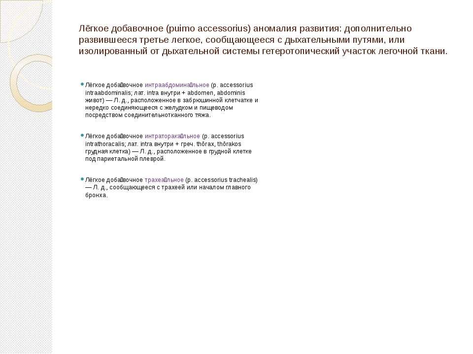 Лёгкое добавочное (puimo accessorius) аномалия развития: дополнительно развив...
