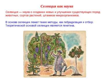 Селекция как наука Селекция — наука о создании новых и улучшении существующих...