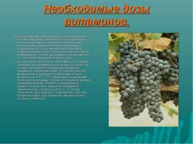 Необходимые дозы витаминов. Большинство витаминов быстро разрушается в органи...