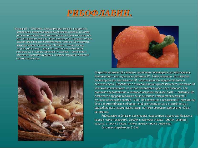 РИБОФЛАВИН. Витамин В2, С17Н20N4O6, водорастворимый витамин; производное раст...