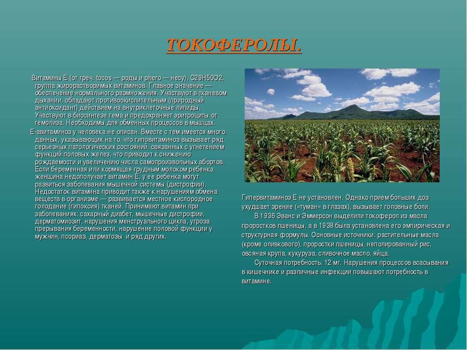 ТОКОФЕРОЛЫ. Витамины Е (от греч. tocos — роды и phero — несу), С29Н50О2, груп...