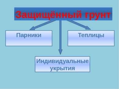 Защищённый грунт Индивидуальные укрытия Парники Теплицы