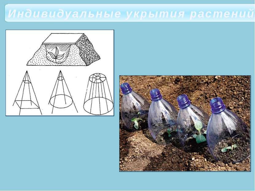 Индивидуальные укрытия растений