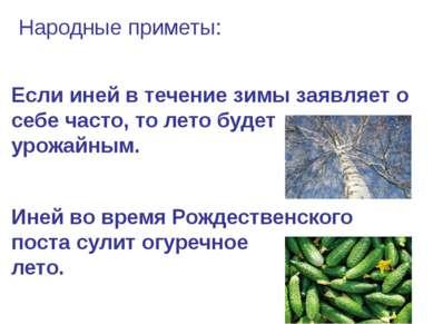 Народные приметы: Если иней в течение зимы заявляет о себе часто, то лето буд...