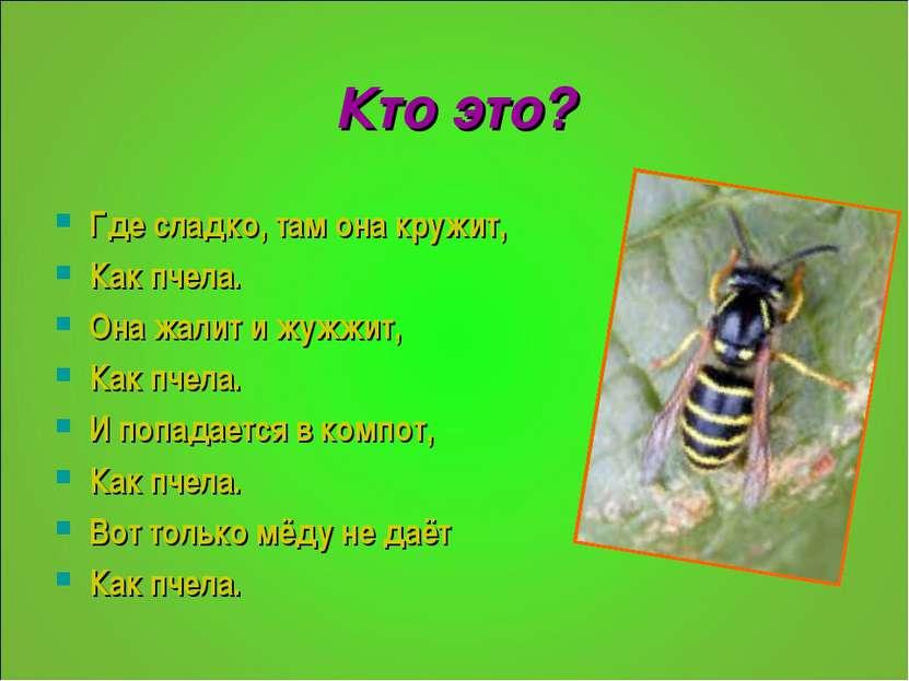 Кто это? Где сладко, там она кружит, Как пчела. Она жалит и жужжит, Как пчела...