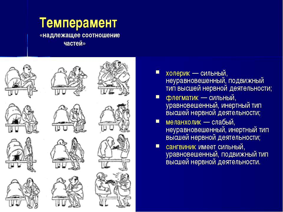 Анализ финансового состояния предприятия Реферат тему высшая нервная деятельность