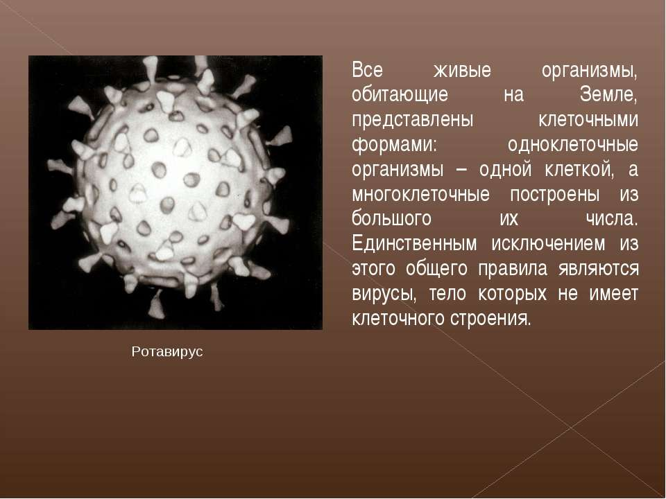 Все живые организмы, обитающие на Земле, представлены клеточными формами: одн...