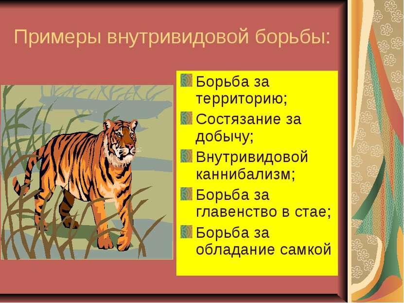 Примеры внутривидовой борьбы: Борьба за территорию; Состязание за добычу; Вну...