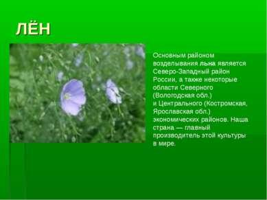 ЛЁН Основным районом возделывания льна является Северо-Западный район России,...