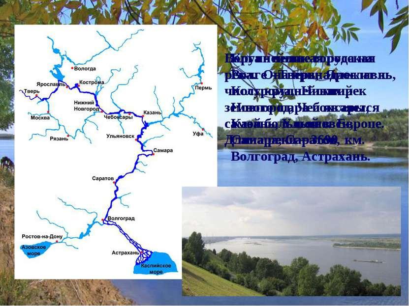 Волга - великая русская река. Она принадлежит к числу крупнейших рек земного ...
