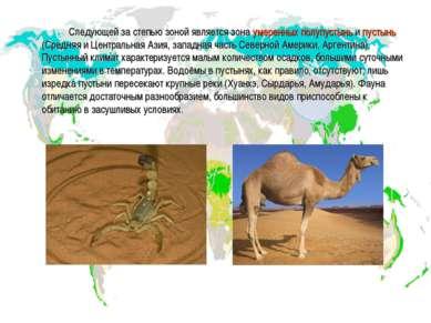 Следующей за степью зоной является зона умеренных полупустынь и пустынь (Сред...