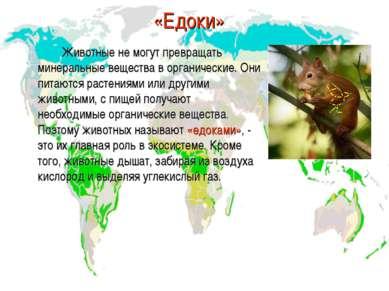 «Едоки» Животные не могут превращать минеральные вещества в органические. Они...
