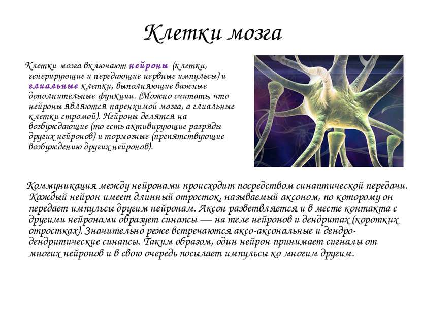 Клетки мозга Клетки мозга включают нейроны (клетки, генерирующие и передающие...