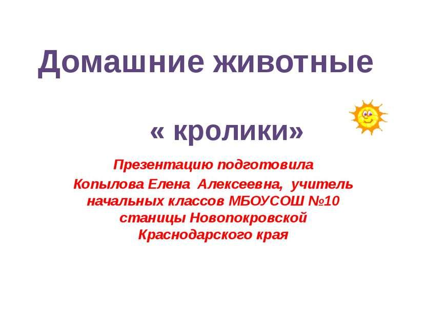 « кролики» Презентацию подготовила Копылова Елена Алексеевна, учитель начальн...