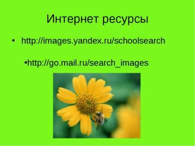 Интернет ресурсы http://images.yandex.ru/schoolsearch http://go.mail.ru/searc...