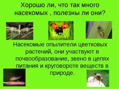 Хорошо ли, что так много насекомых , полезны ли они? Насекомые опылители цвет...