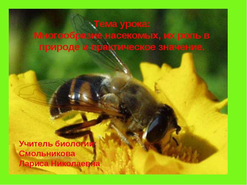 Тема урока: Многообразие насекомых, их роль в природе и практическое значение...