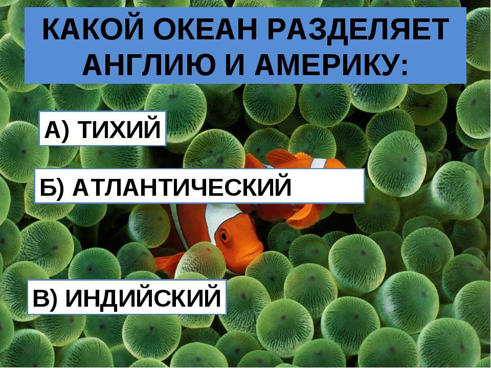 КАКОЙ ОКЕАН РАЗДЕЛЯЕТ АНГЛИЮ И АМЕРИКУ: A) ТИХИЙ Б) АТЛАНТИЧЕСКИЙ В) ИНДИЙСКИЙ