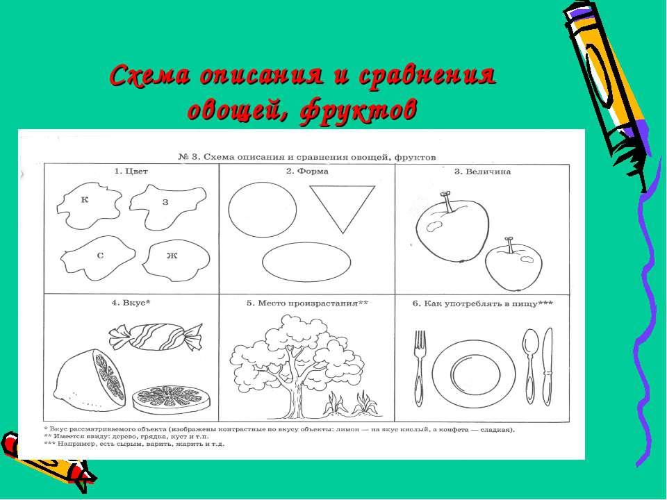 Схема описания и сравнения овощей, фруктов