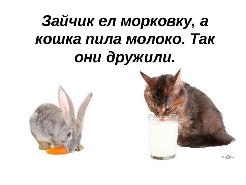 Зайчик ел морковку, а кошка пила молоко. Так они дружили.