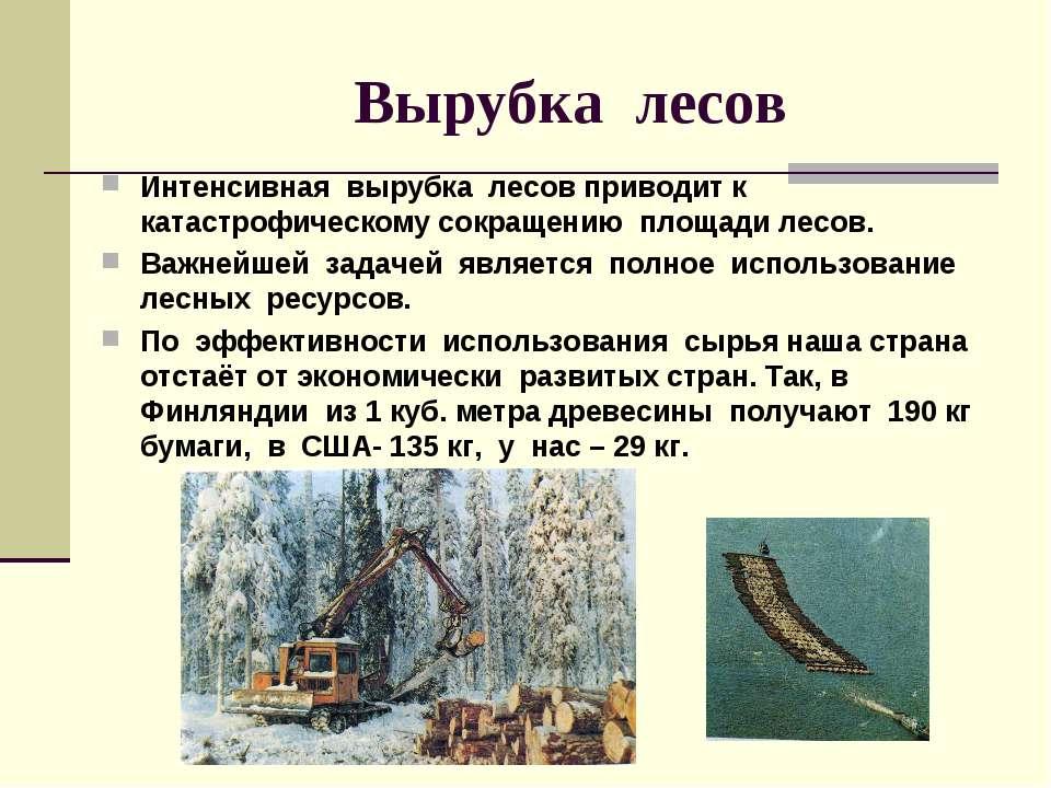 Вырубка лесов Интенсивная вырубка лесов приводит к катастрофическому сокращен...