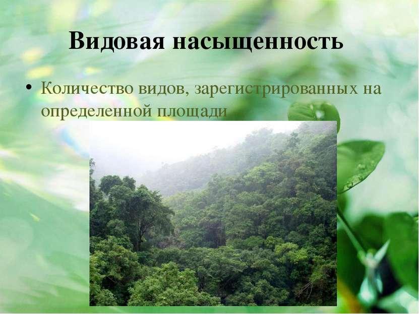 Видовая насыщенность Количество видов, зарегистрированных на определенной пло...