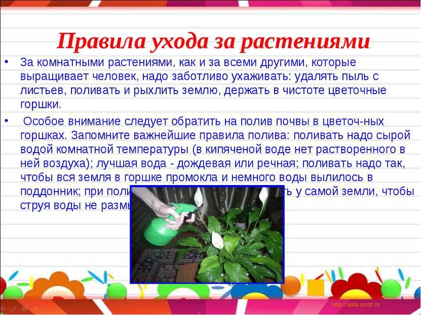 Правила ухода за растениями За комнатными растениями, как и за всеми другими,...