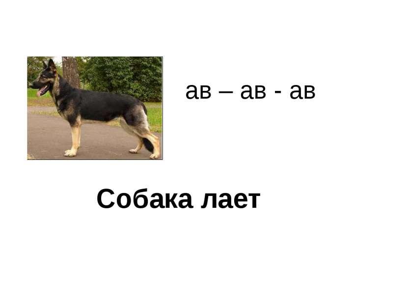 Собака лает ав – ав - ав