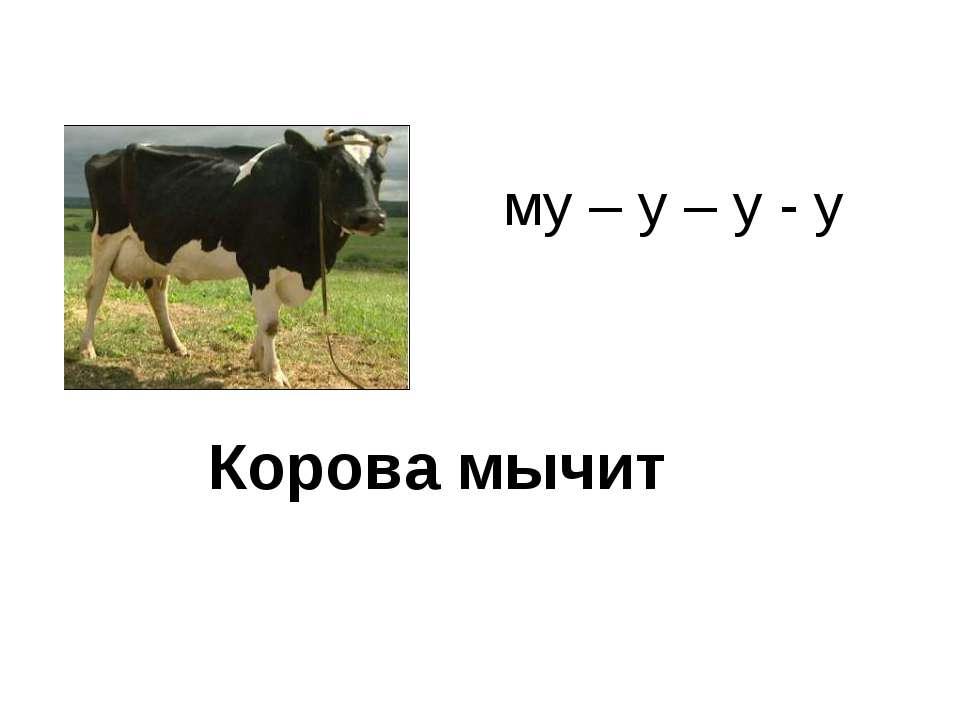 Корова мычит му – у – у - у